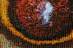 Vlindervleugel